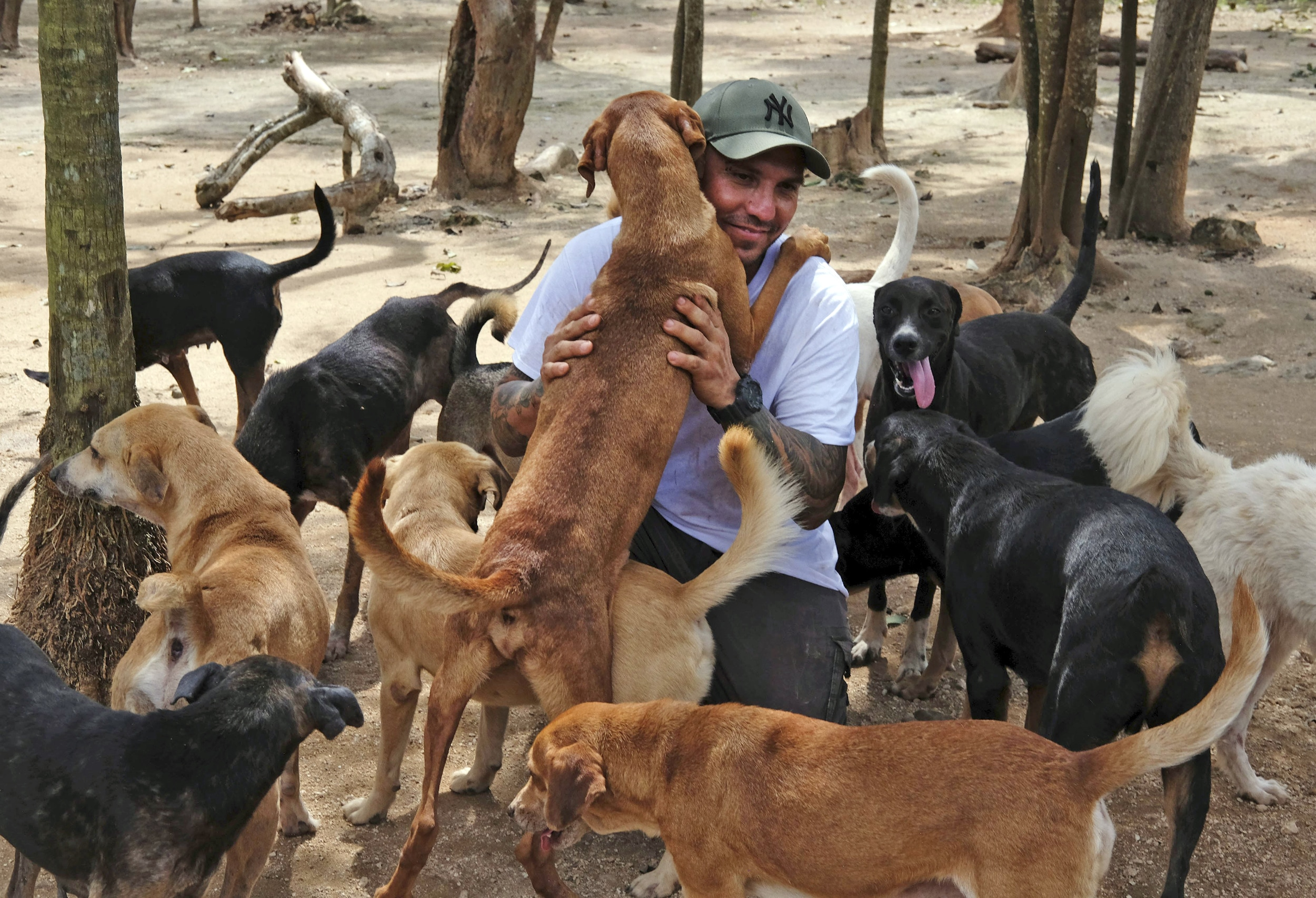 Ricardo Pimentel is greeted by dogs that he rescued at his Tierra de Animales (Land of Animals) shelter in Leona Vicario, Mexico, on Oct. 13, 2020.